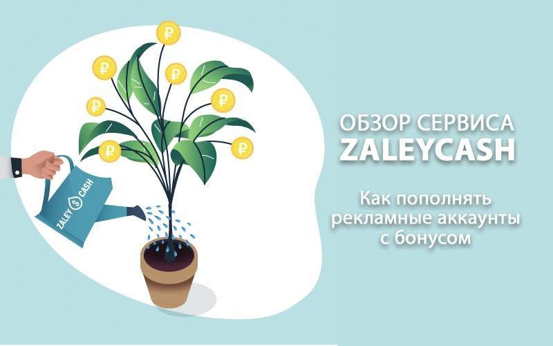 Обзор сервиса ZaleyCash