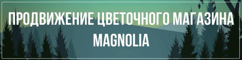 Продвижение цветочного магазина Magnolia