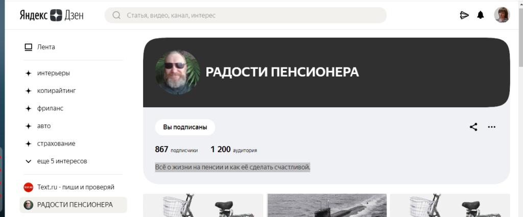 Пример названия канала Яндекс Дзен